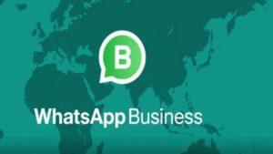 il catalogo whatsapp business